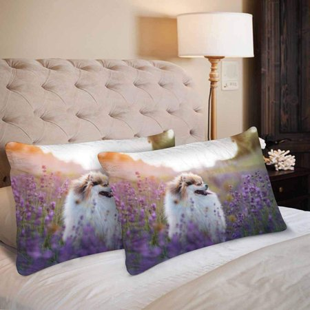 GCKG Hot Summer Little Dog Lavender Field Pillow Cases Pillowcase 20x30 inches Set of 2 - image 3 of 4
