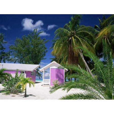 Colourful Beach Hut Beneath Palm Trees, Rum Point, Grand Cayman, Cayman Islands, West Indies Print Wall Art By Ruth Tomlinson ()