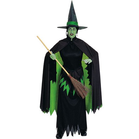 Wicked Witch Adult Halloween Costume