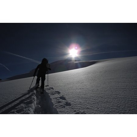 Canvas Print Ski Backcountry Skiiing Touring Skis Alpine Stretched Canvas 10 x