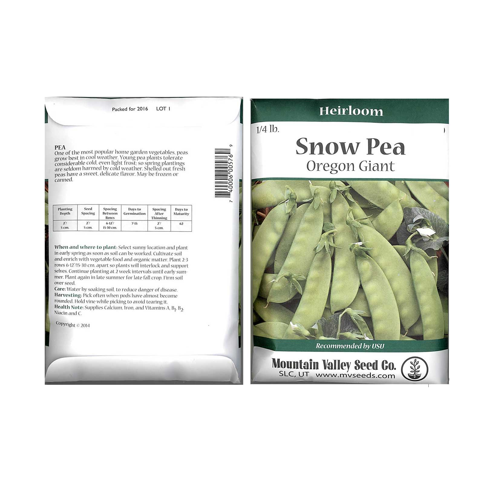 PEAS OREGON GIANT PEAS 1 LB  NON GMO HEIRLOOM Seed   FREE Shipping