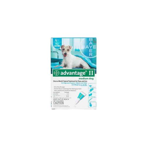 Flea Control for Dogs And Puppies in Teal