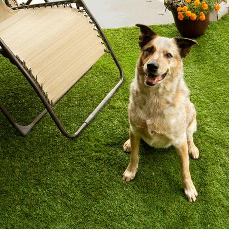 Flooring Inc Del Mar Turf Rolls 6.5'x4' - Artificial Grass, Pet Turf, Patio