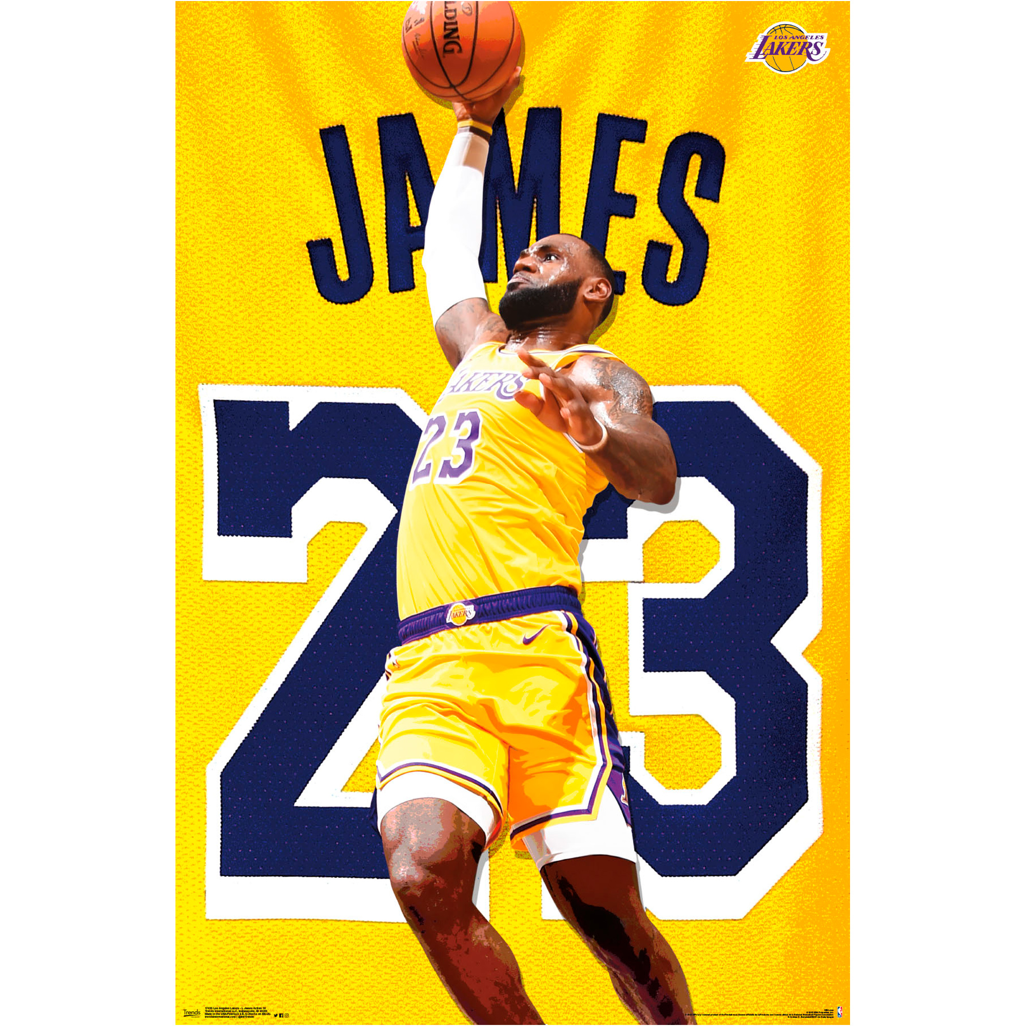LeBron James Los Angeles Lakers 22.4'' x 34'' NBA Players Poster - No Size