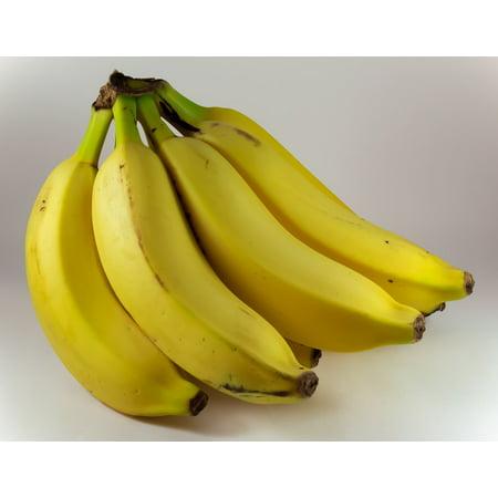 LAMINATED POSTER Food Bunch Of Bananas Fruit Mature Banana Yellow Poster Print 24 x 36 ()