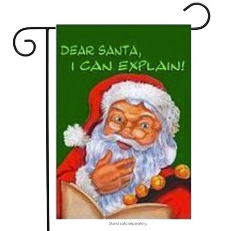 I Can Explain Santa Christmas Garden Flag Holiday Yard Banner 12