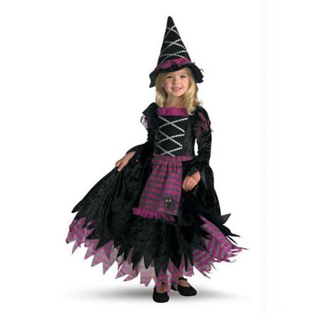 Costumes For All Occasions Dg3216L Fairy Tale Witch 4 To 6 - Fairy Tale Costumes For Kids