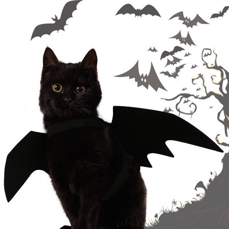 Newpee New Halloween Pet Dog Puppy Cat Black Cool Bat Wing Make Up Clothes - Cool Halloween Horderves
