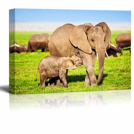 Canvas Prints Wall Art - Mother Elephant Feeding a Baby Elephant on ...