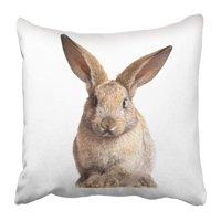 ARTJIA Gray Easter Bunny Cute Rabbit On The White Adorable Pillowcase 16x16 inch