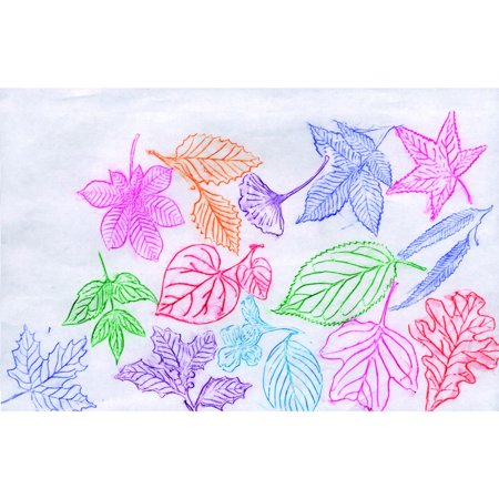 Roylco 076928 Leaf Rubbing Plate, 4 x 5 In. Set Of - Leaf Rubbings