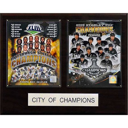 16x20 Pittsburgh 2009 City of Champions - Party City Pittsburgh