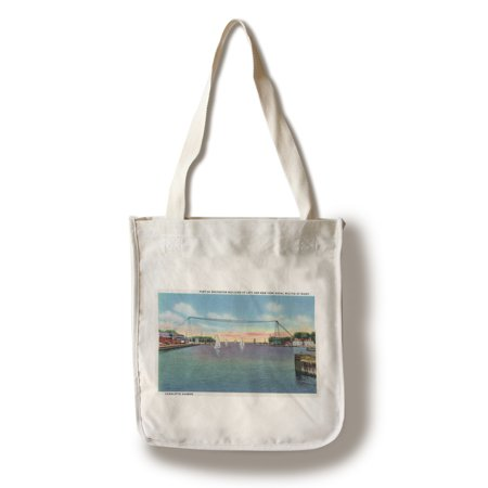 Rochester, NY - Genesee River Gorge, Park Avenue Bridge, Lower Falls View (100% Cotton Tote Bag - Reusable)