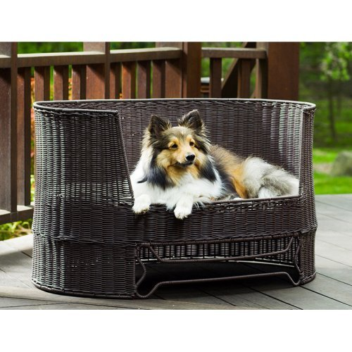Refined Canine Wicker Dog Day Bed