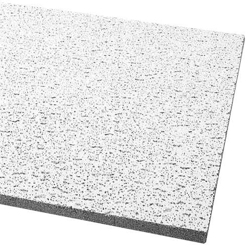 Armstrong Acoustical Ceiling Panel 755B Fissured Square Lay In, 24X48X5/8 In., 12 Per Case