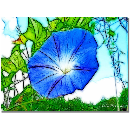 """Trademark Art """"Heavenly Blue Morning Glory"""" Canvas Art by Kathie McCurdy"""