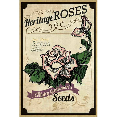 Marmont Hill  Flower Packet Roses  Painting Print On Canvas