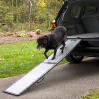 Gen7Pets Feather-Lite Ramp, Grey