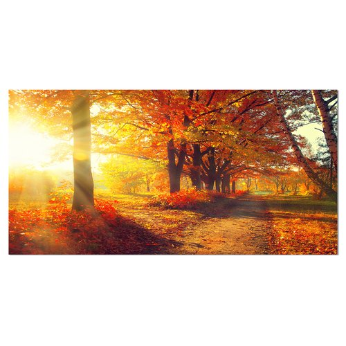 Design Art 'Autumnal Trees in Sunrays' Photographic Print on Wrapped Canvas