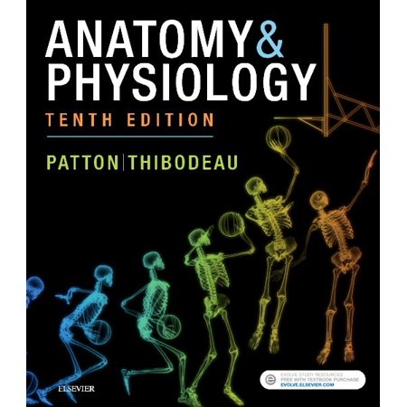 Anatomy & Physiology (Includes A&p Online Course) - Walmart.com