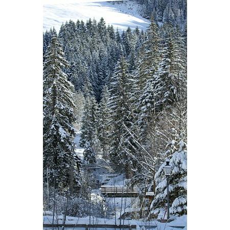 LAMINATED POSTER Snow Landscape Snowy Sun Sparkle Winter Snow Poster Print 24 x 36