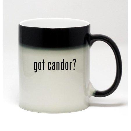 11oz Color Changing Coffee Mug - got candor?
