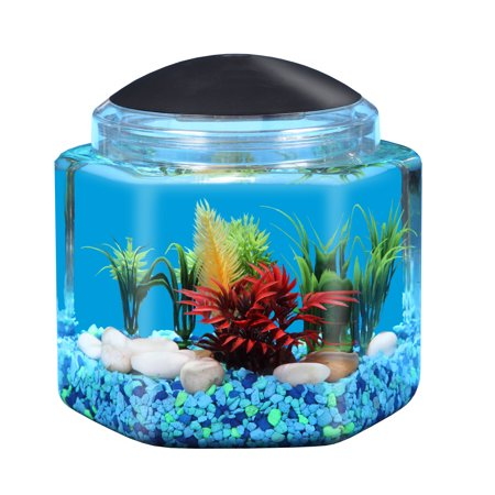 Hawkeye 1-Gallon Betta Hex Fish Tank with LED Lighting