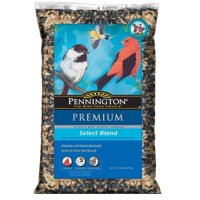Pennington Select Wild Bird Feed and Seed, 20 lbs