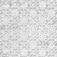 White Rachelle Lace 58 Inch Fabric Sold by the Yard