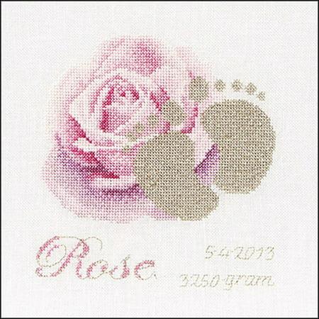 (Birth Sampler Rose On Aida Counted Cross Stitch Kit-5.75