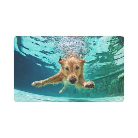 MKHERT Funny Labrador Retriever Puppy Dog Underwater Doormat Rug Home Decor Floor Mat Bath Mat 30x18 inch