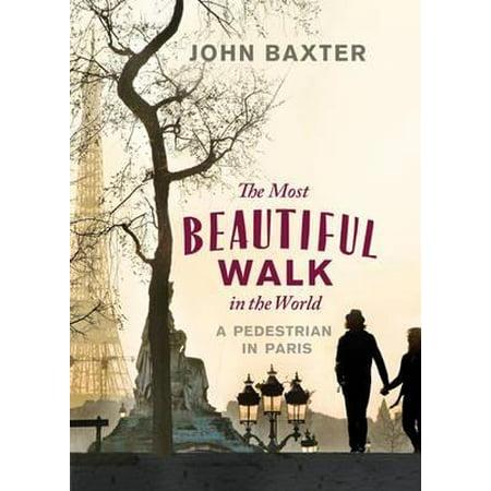Most Beautiful Walk in the World a Pedestrian in Paris -