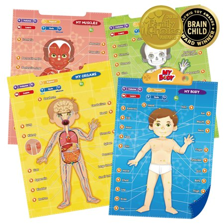 BEST LEARNING i-Poster My Body - Anatomy Games