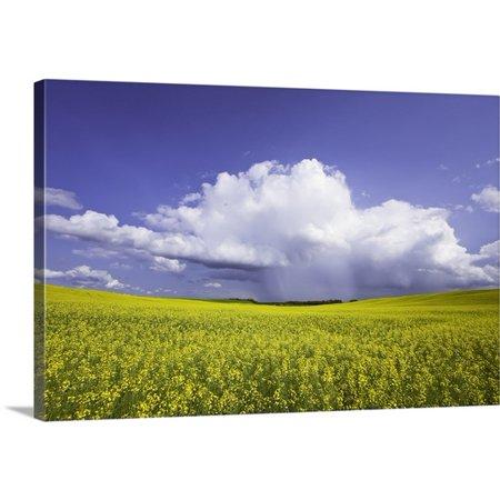 Great Big Canvas Ken Gillespie Premium Thick Wrap Canvas Entitled Rainstorm Over Canola Field Crop  Pembina Valley  Manitoba  Canada