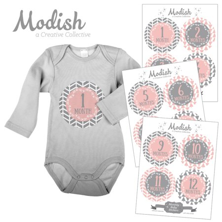 Modish Tailor Effects - Modish Monthly Baby Stickers, Girl, Pink, Gray, Arrows, Tribal, Modern, Baby Photo Prop, Baby Shower Gift, Baby Book Keepsake