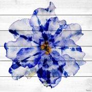 Parvez Taj Blue And White Flower