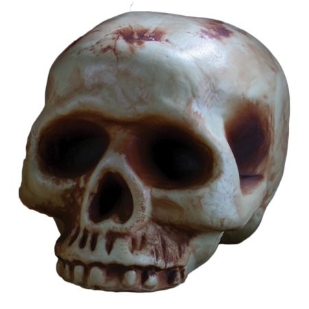 Fun World Scary Halloween Decaying Skull 8