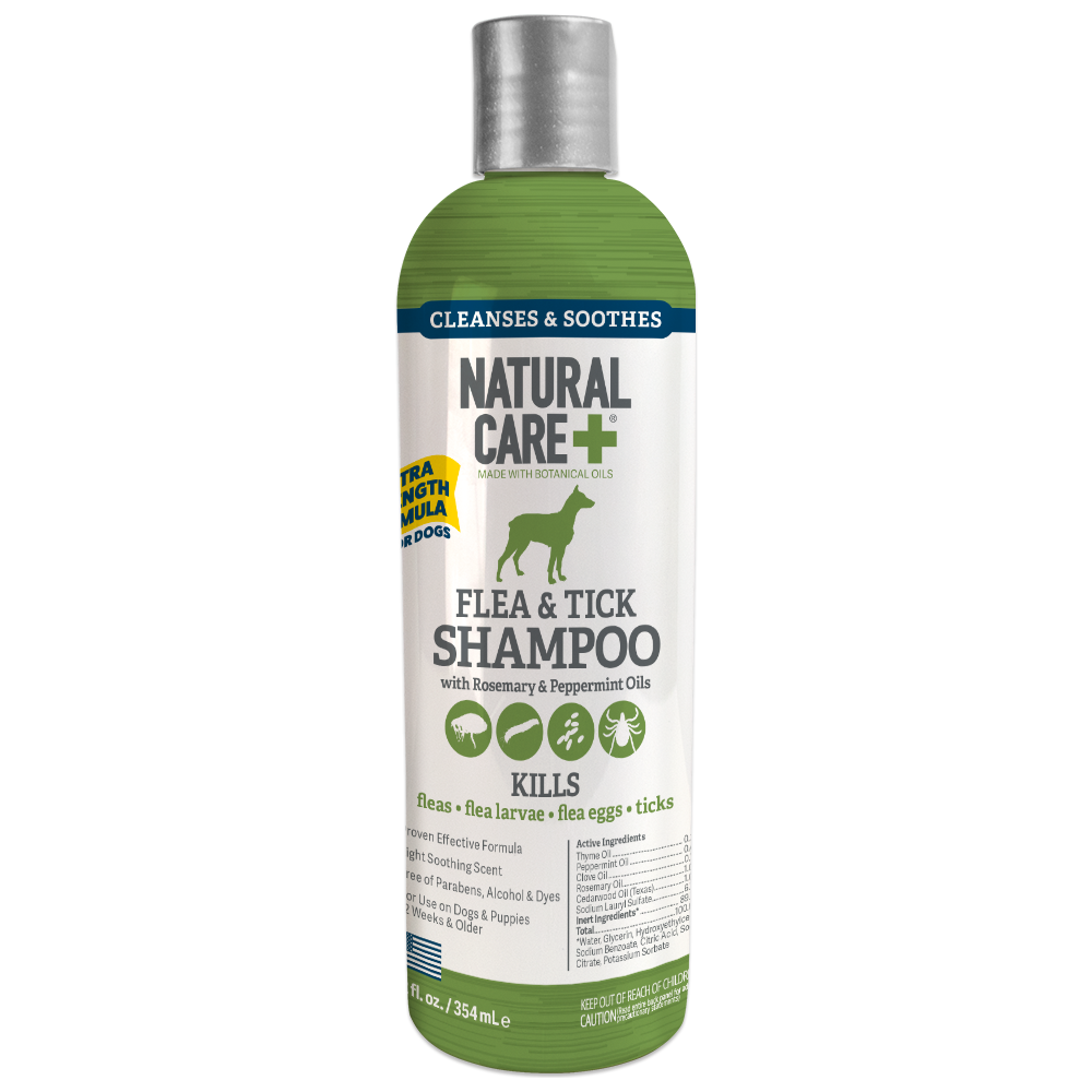 Natural Care Flea and Tick Shampoo for Dogs and Cats, 12 Oz.