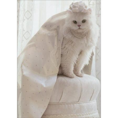 Avanti Press Cat Wrapping Paper Wedding Dress Bridal Shower Card (Wedding Gift Wrap)