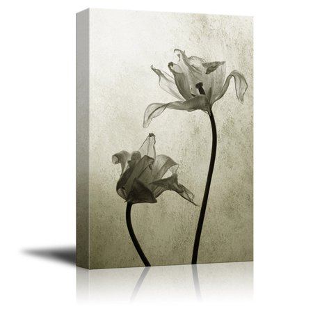 wall26 Canvas Print Wall Art - Transparent Tulips in Back Light on Rustic Background - Gallery Wrap Modern Home Decor | Ready to Hang - 12x18 inches (Halloween Clip Art Transparent Background)