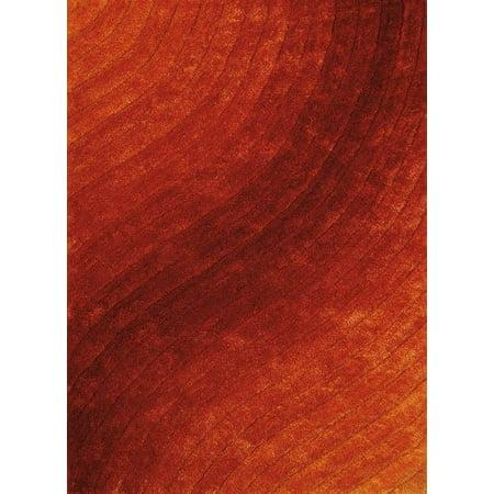 Burnt Orange Area Rug (Allure  Area Rug in Burnt Orange (3 ft. L x 1 ft. 10 in. W))
