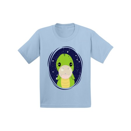 Awkward Styles Dinosaur Shirt for Infant Cute Gift For 5 Year Old Dinosaur Birthday T-shirt Funny Dinosaur T shirt for Girls and Boys Themed Party Shirts Kids Dinosaur