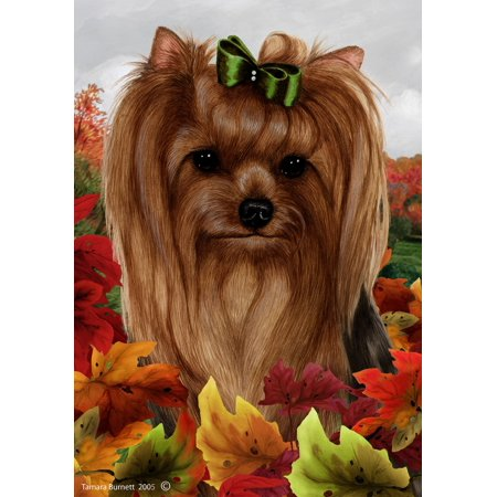 Yorkie Show Cut - Best of Breed Fall Leaves Garden