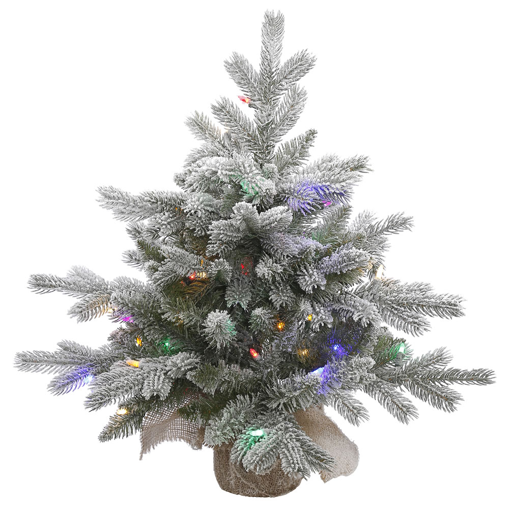 Vickerman Pre-Lit 2' Frosted Sable Artificial Christmas ...