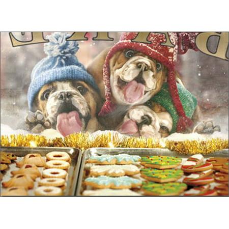 Avanti Press - Avanti Press 3 Christmas Dogs At Bakery Window Box of 10 Funny / Humorous Bulldog Christmas Cards