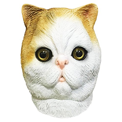 Snoopy The Exotic Shorthair Cat Costume Face Mask Off The Wall
