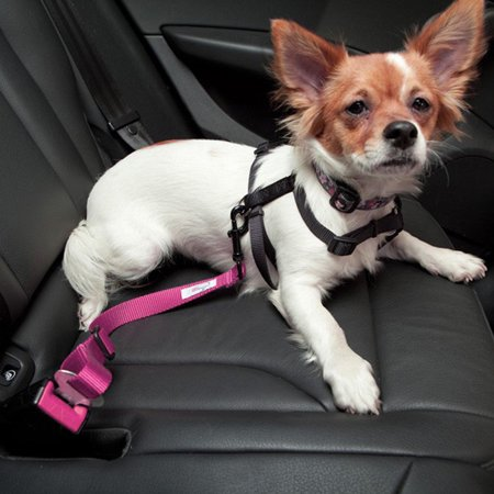 Karen Deals Adjustable Pet Car Seat Belt Keep Your Dog Safely Restrained While (Baby Cries In Car Seat While Driving)
