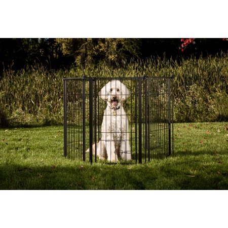 (Carlson Extra Tall 144-Inch Super Wide Heavy Duty Gate and Pet Pen, Includes Walk Through Door and Mounting Hardware)