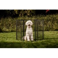 Carlson Extra Tall 144-Inch Super Wide Heavy Duty Gate and Pet Pen, Includes Walk Through Door and Mounting Hardware