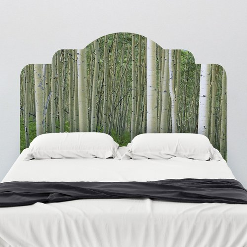 Walls Need Love Paul Moore's Birch In Uncompahgre National Forest Headboard Wall Mural